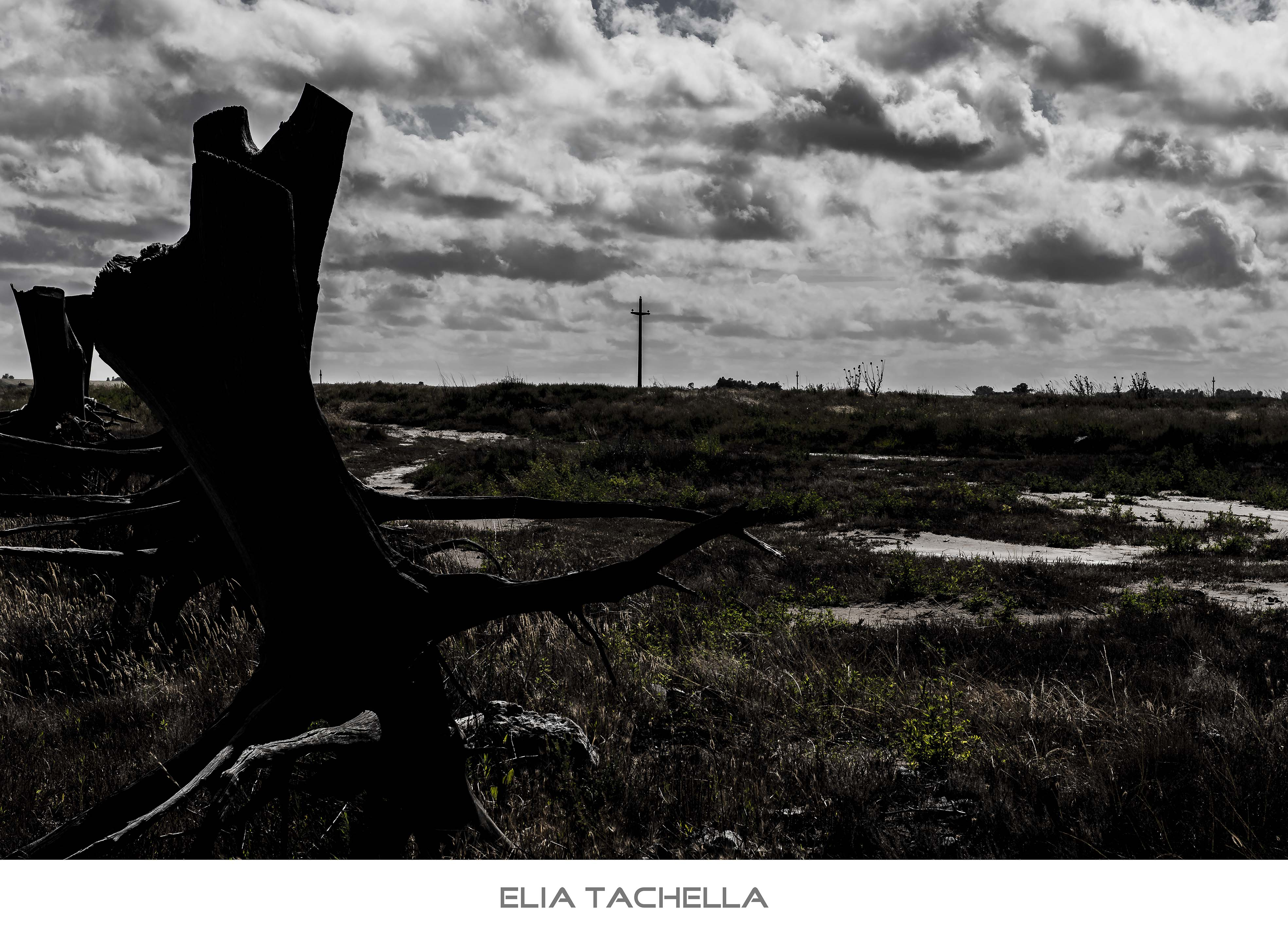 SoloAnteLaTormenta-EliaTachella-2014.jpg