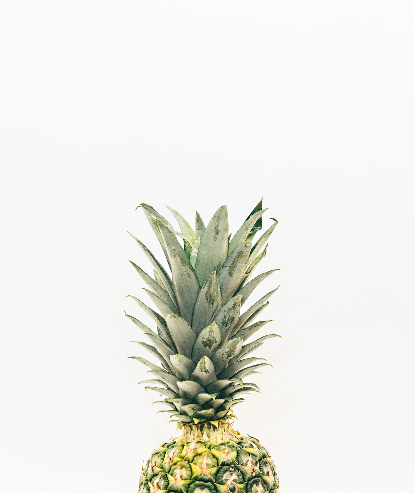 pineapple-supply-co-262624-unsplash.jpg