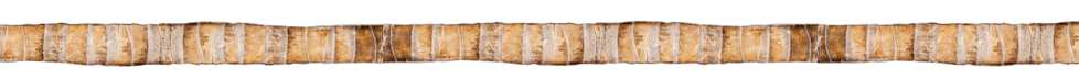 coconutbark_banner.png