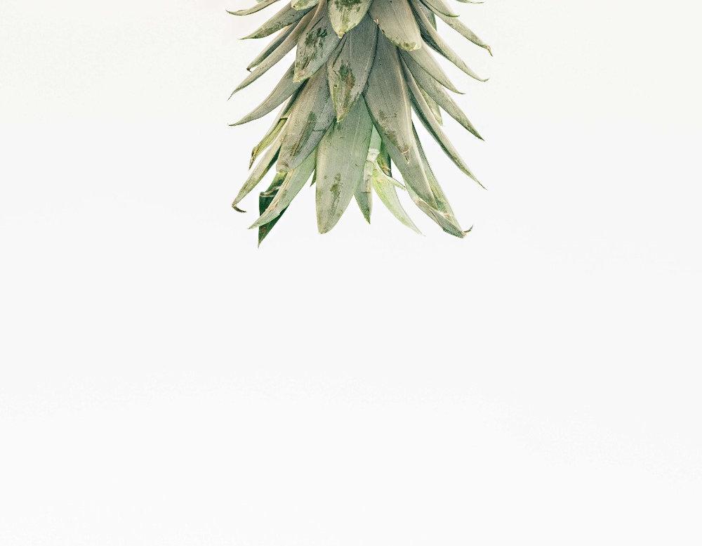 pineapple-supply-co-262624-unsplash_edit