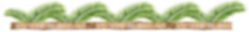 coconutbark_with_palm_leaves_banner.png