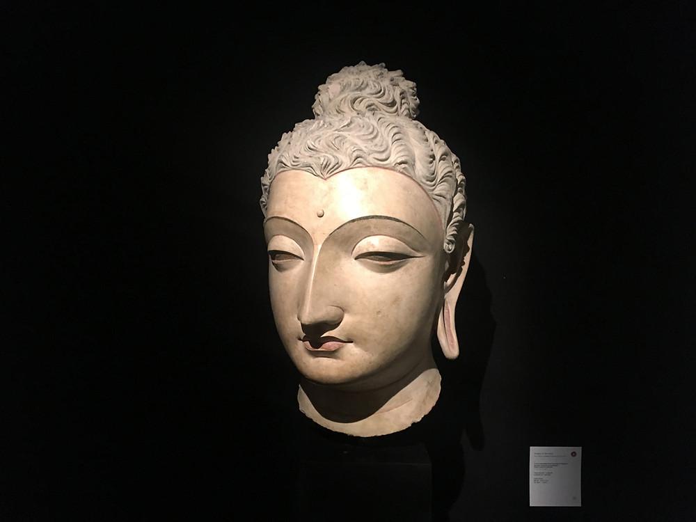 Large Stucco Buddha Head, Gandhara