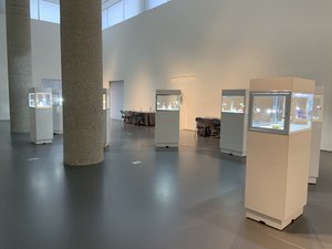 Empty Kangxi Porcelain Gallery at Sotheby's NYC