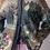 Thumbnail: Pastel elephant