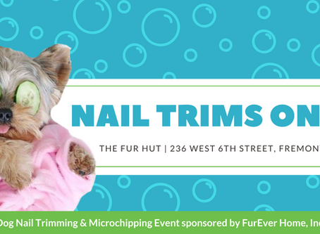 Nail  Trims AT THE FURHUT