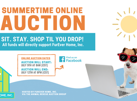 Summertime Online Auction Fundraiser