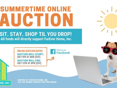 Summertime Online Auction Fundraiser