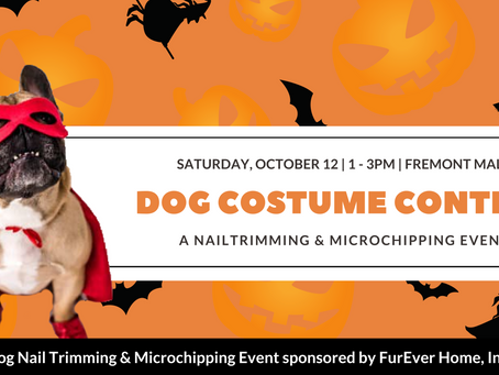 Costume Contest & NAIL TRIMS AT THE FREMONT MALL
