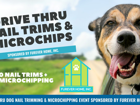 Drive Thru Nail Trims & Microchipping