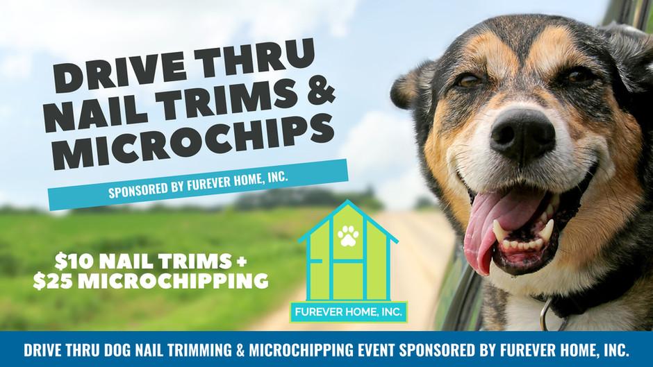Drive Thru Nail Trims & Microchipping