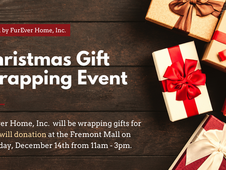 CHRISTMAS GIFT WRAPPING EVENT