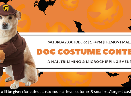 Costume Contest & Nail Trims/Microchips