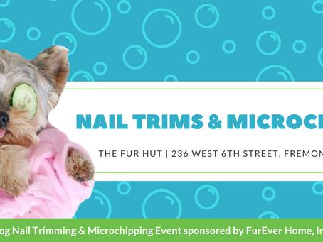 Nail  Trims & Microchipping at the furhut!