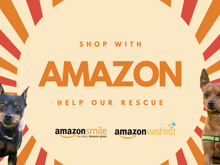 Be a hero - shop Amazon to help our rescue!