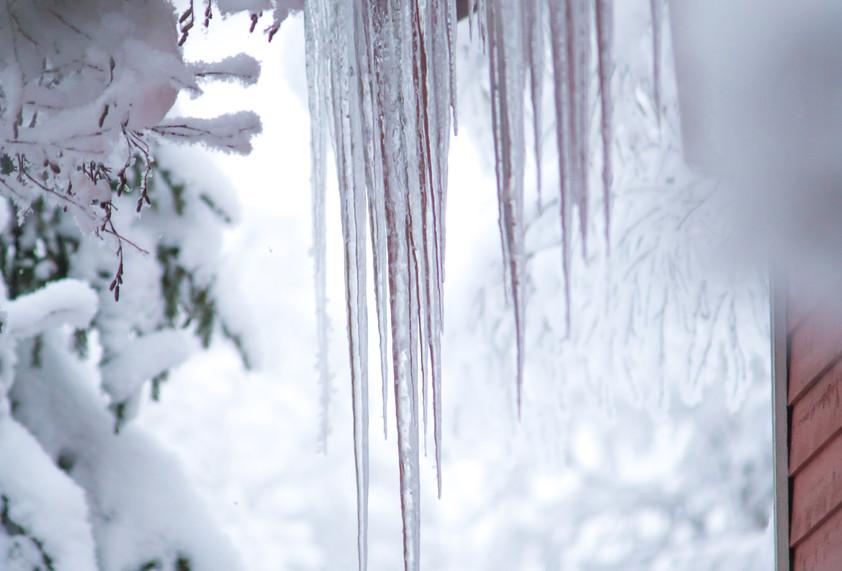 Lapland - uitgewerkt-4438.jpg