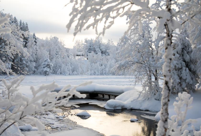 Lapland - uitgewerkt-4618.jpg