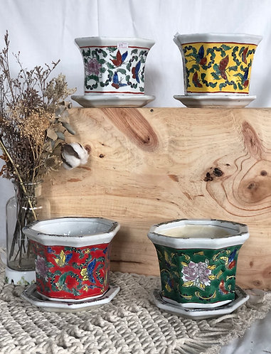 Printed pot with tray |  5 colours x 5 sizes