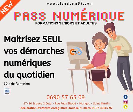 Le pass numérique.png