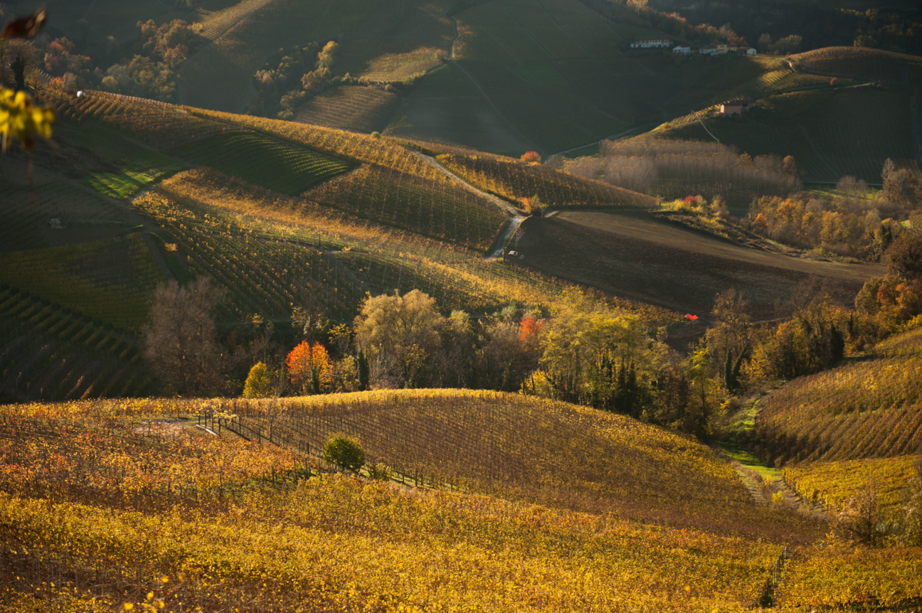 A View on Langhe