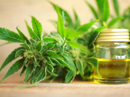 The Ultimate Shopper's Guide To Buy The Best Quality CBD Oil