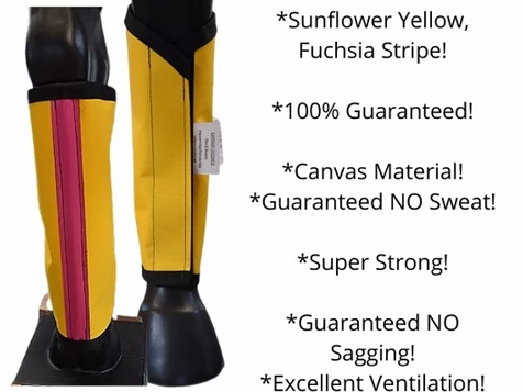 BENEFITS OF FLY PROTECTION FOR HORSES