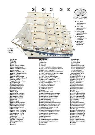 Royal CLIPPER  Segelplanplan