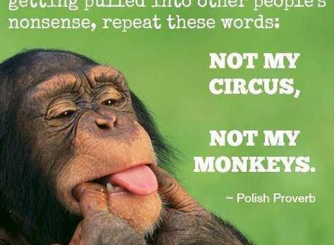 Monkey Picker Uppers!