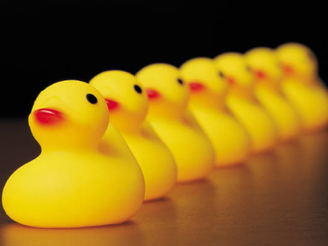 Don't Wait Until You Have All Your Ducks In A Row
