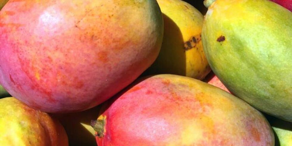 סילו מארח-מכירת מנגו וגלידה טבעונית ישירות מהחקלאי/יצרן