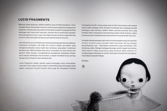 Lucid Fragments