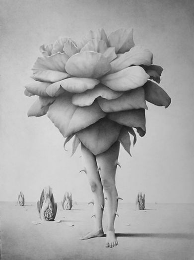 Garis edelweis, Mawar, 2020, Graphite on canvas, 180 x 130 cm