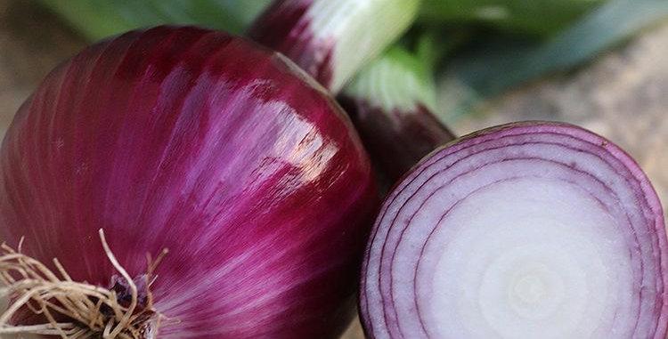 Red Onion Bundles