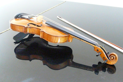 Geige II Foto privat.JPG