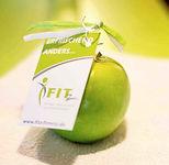 Fitz Fitness Apfel.jpg