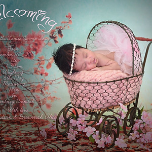 Manuella Louise's Newborn Session