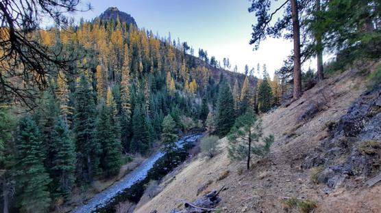 North Fork John Day Wilderness