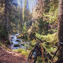Mountain Bike Rentals for 2 from Pine Mountain Sports
