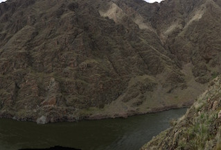 CdV's Field Notes, 4/8/2019: Spring in Hells Canyon