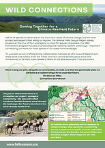Wild Connections factsheet image.png