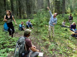 The Ecological Approach to Addressing Climate Change and Resiliency in Northeast Oregon's Forests