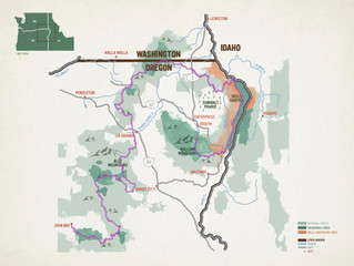 Introducing the Blue Mountains Trail