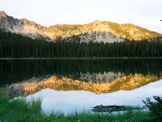 Blue Mountains Trail Summer 2021 Update