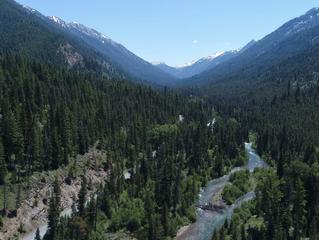 Lostine River Corridor Logging: Lament and a Promise