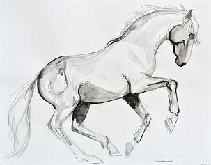 India Ink Horse No. 6