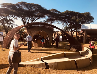 Yale CEA presents an Ecological Pavilion in Nairobi at the UNEA-4