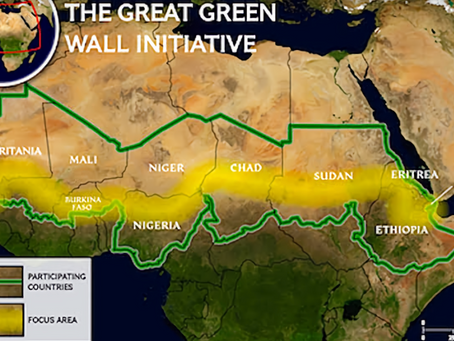 Everything You Need To Know About The Great Green Wall Movement