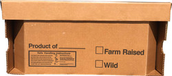 poultry ice pack box with lid