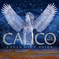 album cover_calico_underblueskies_3000x3