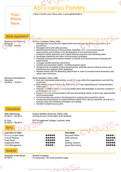Business Development Manager Resume Example by CVGUYS.IN