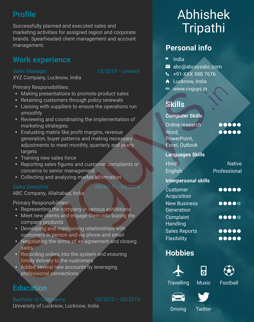 Sales Manager Sample Resume by CVGUYS.IN